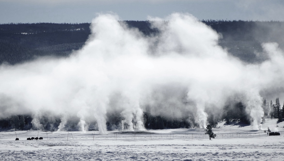 Steam rising from the ground in Yellowstone