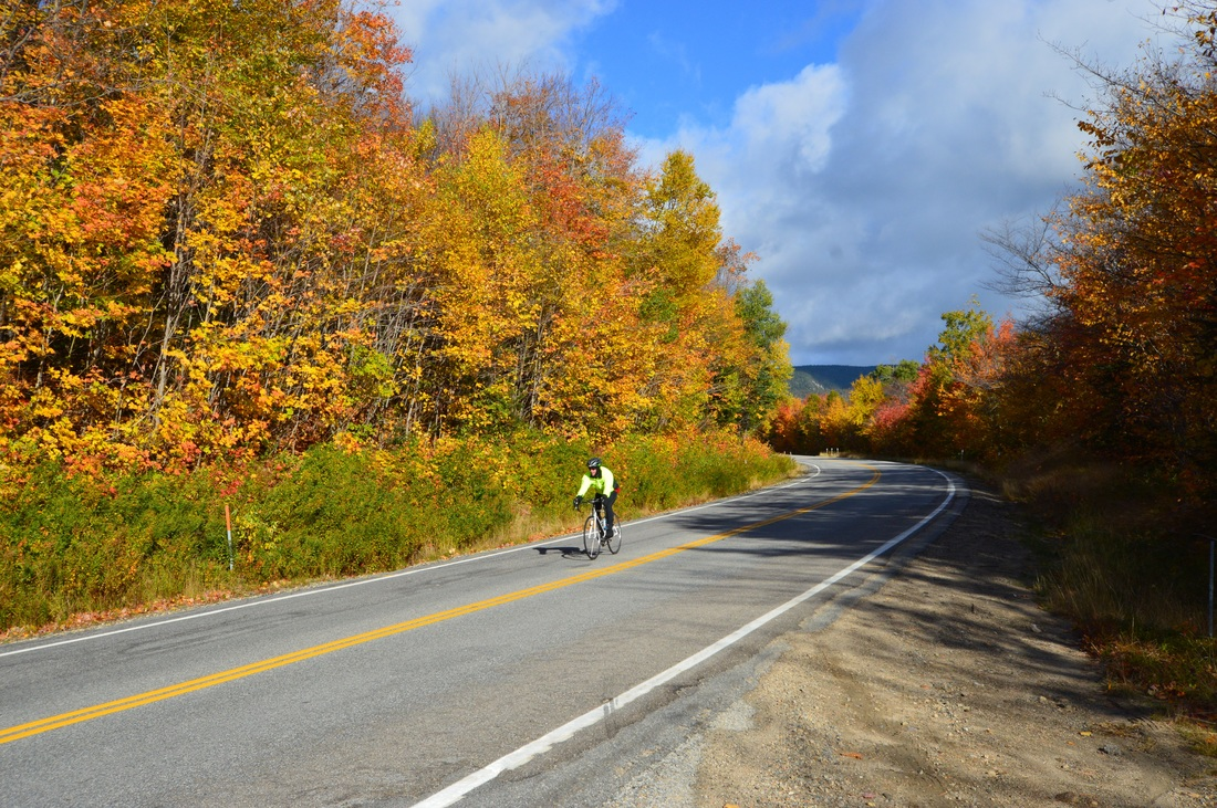 Biker in the fall colors