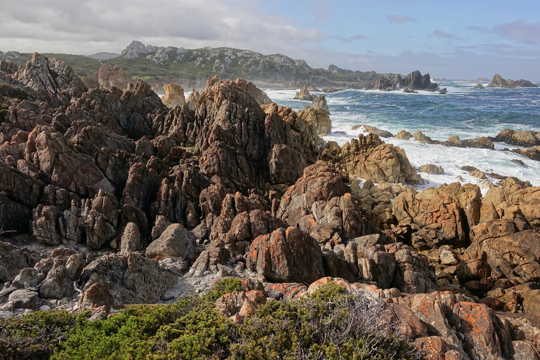 Rocky shoreline on the West Coast Tasmania