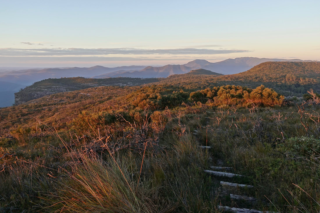 The trail near Corang Peak in the Budawangs of Australia