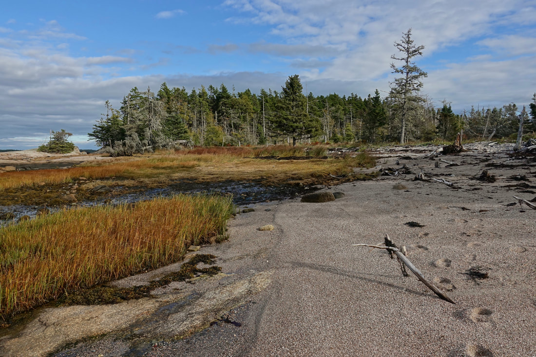 Great Wass Island Preserve hike in Maine