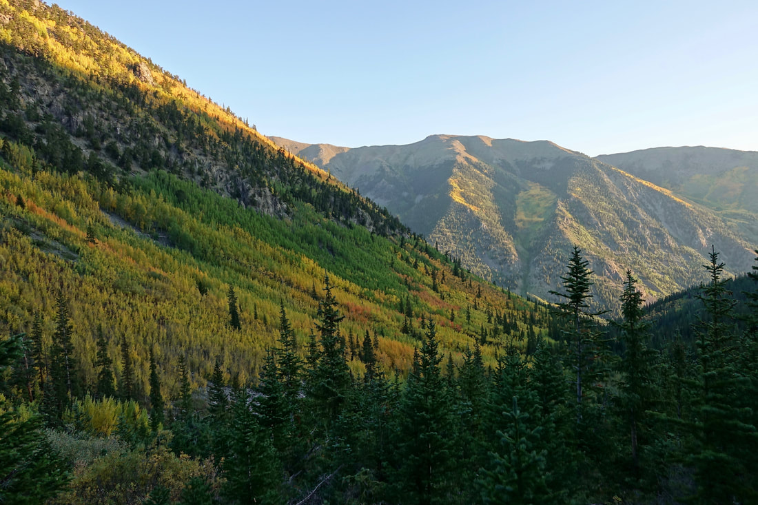 The Missouri Gulch trail that leads to the summit of Mount Belford and Oxford in Colorado