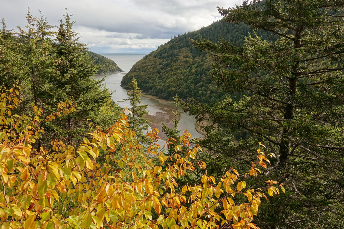 Little Salmon River on the Fundy Footpath hike along the Bay of Fundy in New Brunswick
