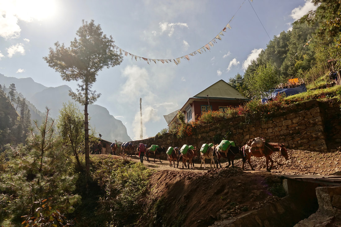 Walking through the lower valley from Lukla to Namche Bazar